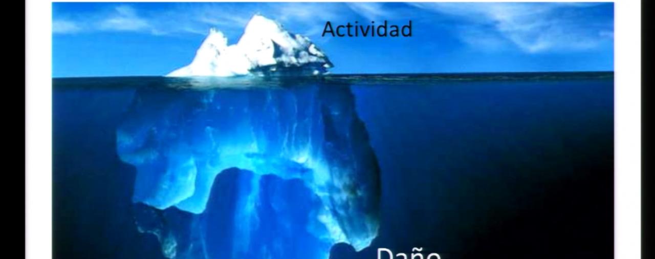 ACTIVIDAD INFLAMATORIA Y DAÑO EN LUPUS
