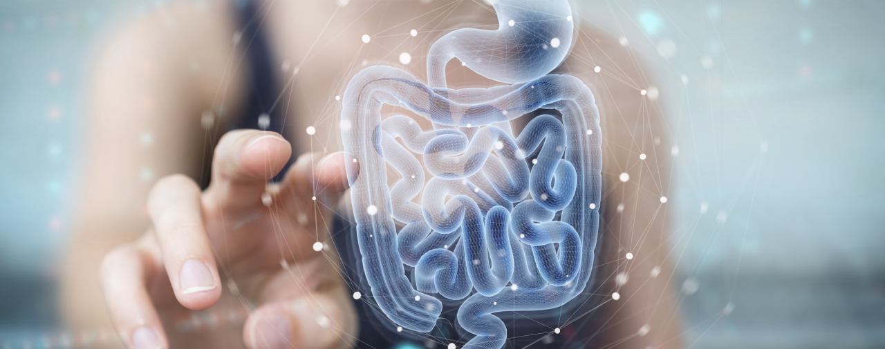 Síndrome de sobrecrecimiento bacteriano o fúngico en el intestino delgado  (SIBO/SIFO)